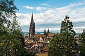 Freiburg Minster, Freiburg im Breisgau, Black Forest, Baden-Württemberg, Germany