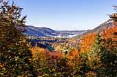 Schliersee in autumn colors, autumn, Bavaria, Germany
