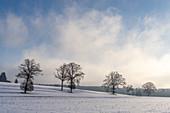 Verschneite Kulturlandschaft im Fünfseeenland zwischen Starnberger See und Ammersee, Bayern, Deutschland