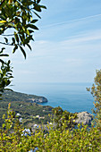 View from above to the sea in Capri, Italy