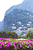 View at mountain and houses of inland in Capri, Italy