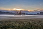 Morgenstimmung mit Bodennebel bei Sonnenaufgang, Feldkirechen-Westerham, Bayern, Deutschland