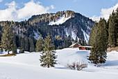 Schwarzentennalm im Winter bei Schnee, Mangfallgebirge, Bayern, Deutschland
