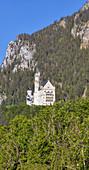 Neuschwanstein Castle from Hohenschwangau, Bavarian Allgäu, upright panorama, Bavaria, Germany