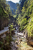 Gorge of the Almbachklamm in the Berchtesgaden Alps, Bavaria, Germany