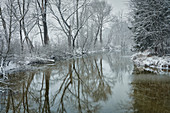 Backwater of the Ammer in winter, Weilheim, Bavaria, Germany, Europe