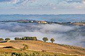 Castello di Porrona near Cinigiano above the Ombrone Valley in the morning mist, Province of Grosseto, Tuscany, Italy