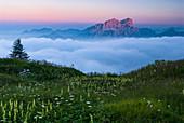 Sunset in the Carnic Alps, mount Creta Grauzaria, Friuli Venezia Giulia region, province Udine, Italy