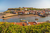 View of Whitby Abbey, St. Mary's Church and Esk riverside houses, Whitby, Yorkshire, England, United Kingdom, Europe