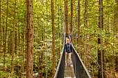 Redwood Treewalk, Canopy Pathway, Rotorua, Bay of Plenty, North Island, New Zealand, Pacific