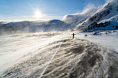 Man rejoices on icy empty road along Barents Sea during the Arctic windstorm, Berlevag, Varanger Peninsula, Finnmark, Norway, Scandinavia, Europe