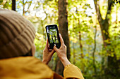 Woman holding up smart phone to take photograph of trees in woodland