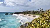 The Harrismith beach, Barbados Island, Lesser Antilles, West Indies, Caribbean region