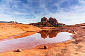 Cathedral Rock reflected in a puddle, Sedona, Arizona, Usa