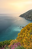 the spring colors of the Cinque Terre coast, taken at sunset from a steep path, National Park of Cinque Terre, municipality of Riomaggiore, La Spezia province, Liguria district, Italy, Europe