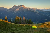 Wildcamping on the fields of Salfeins mountain with Rosskogel mountain in the background, Innsbruck Land, Tyrol, Austria, Europe