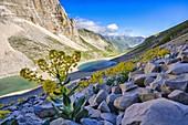 Italy, Umbria, Sibillini mountain range, Mount Vettore, Lake Pilato and mount Pizzo del Diavolo in Summer