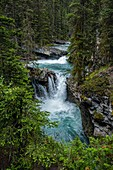 Canada, Alberta, Banff National Park, Bow Valley Parkway, Johnston Canyon: walking on the trail