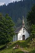 Europe, Italy, Veneto, Unesco Dolomites: Cereda Pass