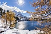 Sun shining over Lago Viola in autumn, Val di Campo, Poschiavo, canton of Graubunden, Switzerland