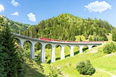 Glacier Express train passes along Tujetsch viaduct surrounded by green woods in summer, Sedrun, Graubunden canton, Switzerland