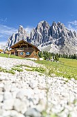 Hikers resting at Malga Casnago (Gschnagenhardt) hut at feet of the Odle mountains, Val di Funes, South Tyrol, Dolomites, Italy