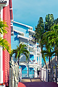Colourful houses and palmtrees in a holiday resort in Varadero, Cuba