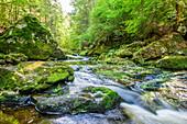 Wildbachklamm Buchberger Leite in the Bavarian Forest, Lower Bavaria, Bavaria, Germany