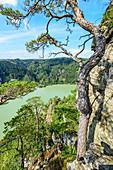 Danube view near the Schlögener Schlinge, Upper Austria, Austria