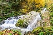 Romantic Wildbach Valley in autumn, Upper Mühlviertel, Upper Austria, Austria