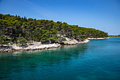 Blick auf die Küste nahe Rab, Primorje-Gorski Kotar, Kroatien, Europa