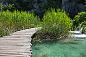 Wooden plank path over pool, Plitvice Lakes National Park, Lika-Senj, Croatia, Europe