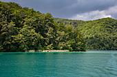 Lake and forest, Plitvice Lakes National Park, Lika-Senj, Croatia, Europe