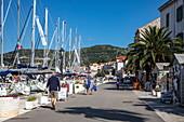 Sailboats and promenade of the town, Vis, Vis, Split-Dalmatia, Croatia, Europe