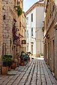Cobblestone alley in the old town, Vis, Vis, Split-Dalmatia, Croatia, Europe