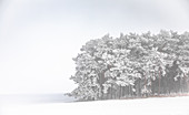Snow landscape in the Hamburg area, Germany