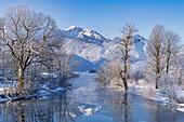 Winter an der Loisach, Kochel am See, Bayern, Deutschland, Europa