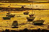 Boote in der Bretagne im goldenen Abendlicht bei Ebbe, Frankreich