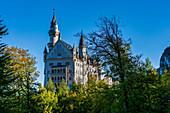 Blick auf Schloss Neuschwanstein, Oberallgäu, Bayern, Deutschland