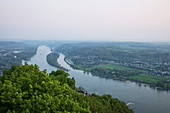 Rhine seen from Drachenfels hill, Koenigswinter, North Rhine-Westphalia, Germany, Europe