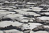 Ethiopia; Afar region; Danakil Desert; Danakil Depression; endless salt pans on Karum lake; Salt extraction