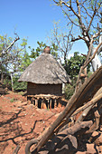 Ethiopia; Southern Nations Region; Konso; thatched hut on wooden stakes; traditional construction; serves to store grain