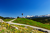 Wooden cross on the Winklmoos Alm in spring with mountain panorama, Tyrol, Salzburg, Chiemgau, Bavaria, Germany