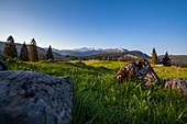 Winklmoos Alm im Frühling und Ausblick in die Tiroler Alpen, Tirol, Chiemgau, Bayern, Deutschland