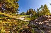 Autumn hiking trail on the Hemmer Suppen Alm, Chiemgau, Bavaria, Germany