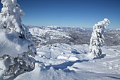 Steinplatte in winter with a view of the Tyrolean and Chiemgau Alps, Tyrol, Pillerseetal, Austria
