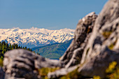 Panoramic view to the Grossglockner in summer, Tyrol, Austria