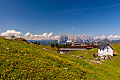 Eggenalm with a view to the Wilder Kaiser in summer, Chiemgau, Bavaria, Germany