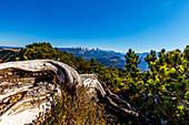 View into the Steinerne Meer in summer, Chiemgau, Bavaria, Germany, Pinzgau, Salzburg, Austria