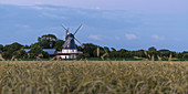 Windmill at Borgsum, Foehr Island, North Frisia, Germany
